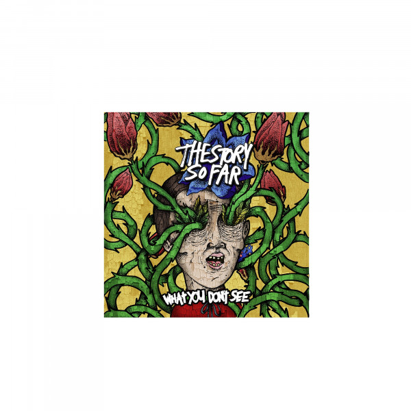 The Story So Far - What You Don't See (CD)